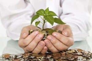 Mãos segurando moedas e uma planta simbolizando o tema Como poupar dinheiro