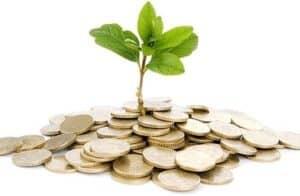 Moedas e muda de planta simbolizando o tema Motivação no controle das finanças pessoais