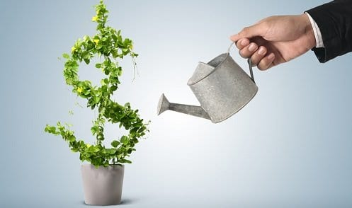 Homem aguando uma planta em formato de $ simbolizando começar a investir