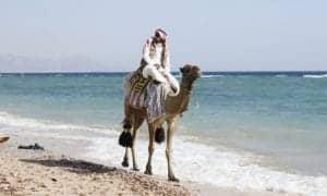 homem montado em um camelo na praia