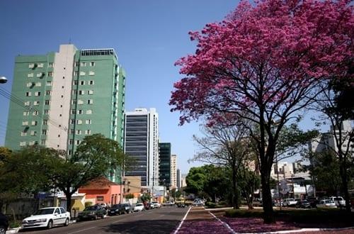 Avenida Afonso Pena em Campo Grande.