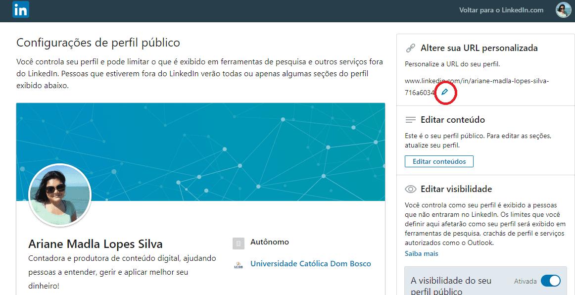 Print 2 sobre como diferenciar uma url no LinkedIn