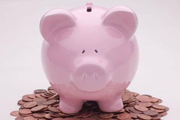 porco representando a poupança Sicoob