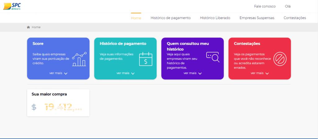 consulta-spc-5-1024x448