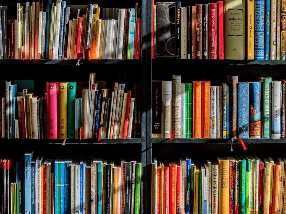 prateleira representando imposto sobre livros