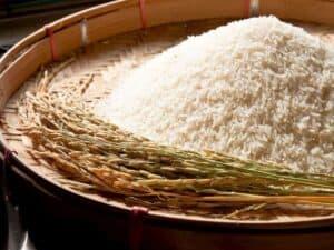 close up de arroz representando isenção para importação de arroz