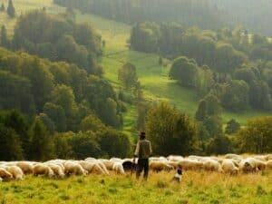 Imagem do dono de uma propriedade rural, que deve declarar o ITR 2020 até o final do mês