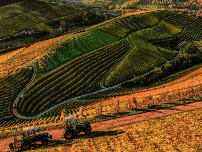 seguro rural ilustrato com uma paisagem de um trator trabalhando numa área de produção