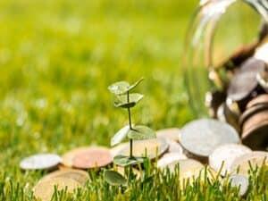 Pequena muda plantada e moedas sinalizam o início da jornada de quem quer aprender como começar a investir