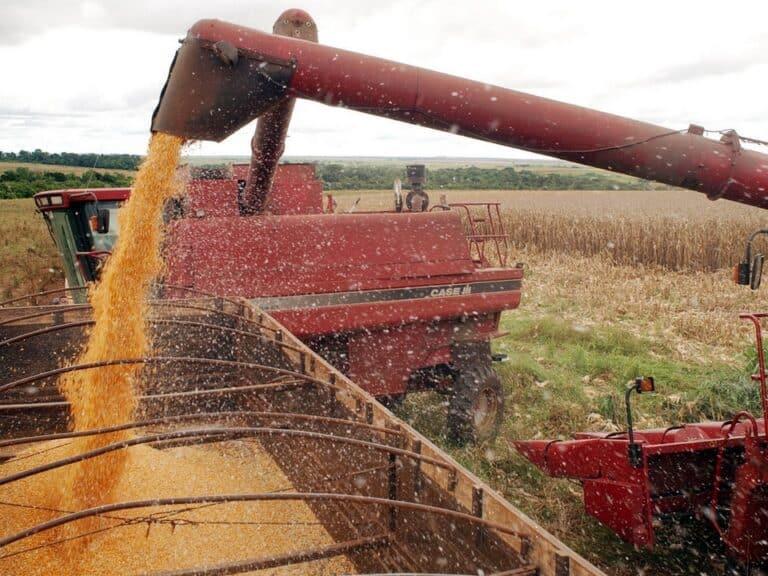Agropecuária foi o grande destaque da economia brasileira deste ano.