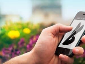 mão segurando celular, representando black friday de celulares