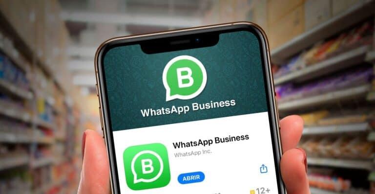 interface do whatsapp business, que adicionacarrinho de compras