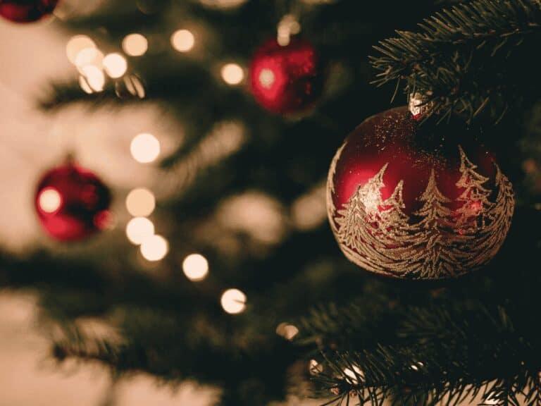 árvore de natal, representando hoje é feriado
