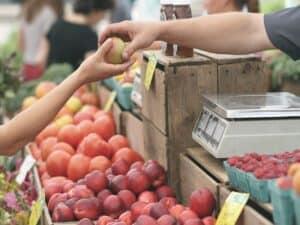 mão de vendedor entregando maça para mão de consumidor representando cesta básica